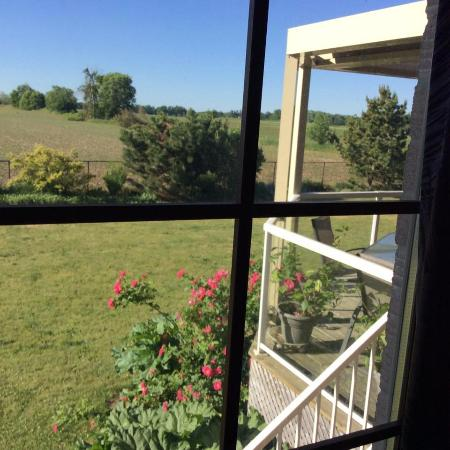 Thamesford, Canadá: Part of the view from our bedroom