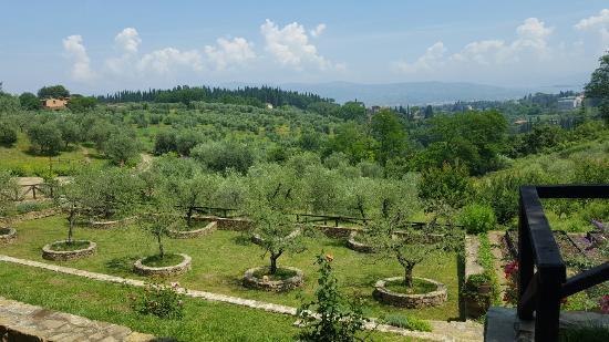 A Taste of Italy : 20160608_124102_large.jpg