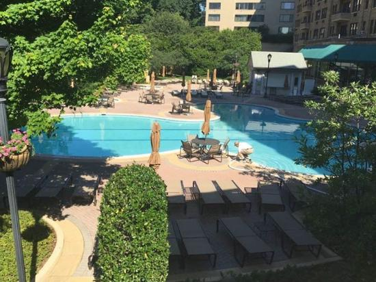 relax by the pool picture of omni shoreham hotel. Black Bedroom Furniture Sets. Home Design Ideas