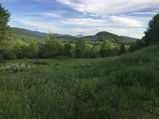 Underhill, VT: Picasso room view