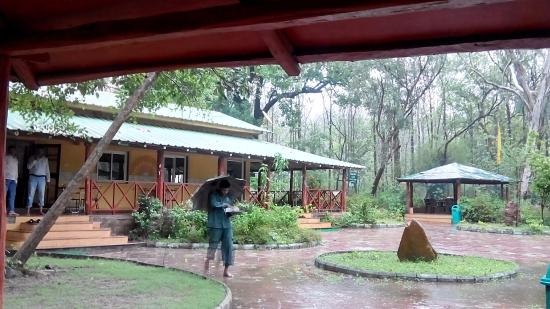 Delawadi Jungle Camp