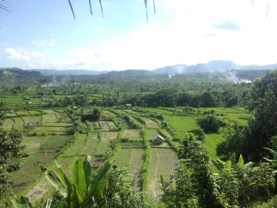 Ababi, Indonesien: view from our room