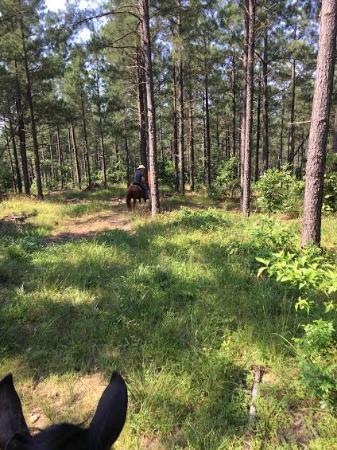 Smithville, OK: Trail ride