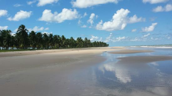 Barra de Santo Antonio, AL: 20160612_115208_large.jpg