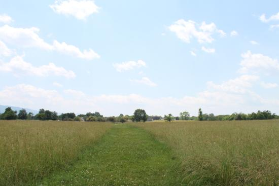 The field of lost shoes at New Market battlefield