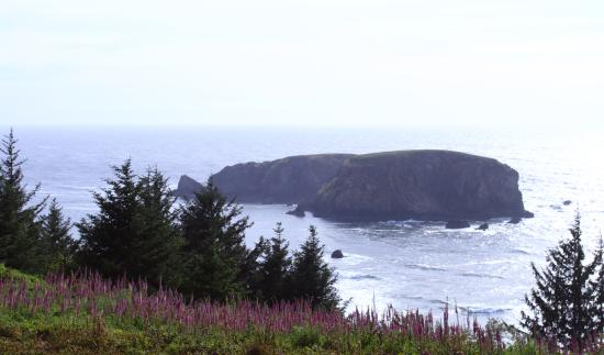 Brookings, Орегон: view from whaleshead viewpoint, milepost 349.3 hwy101