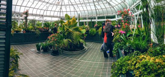 Le jardin d 39 hiver r utilis comme serre aujourd 39 hui photo de domaine cataraqui qu bec ville - Le jardin d hiver ...