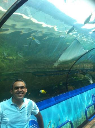 Sydney Aquarium Restaurant