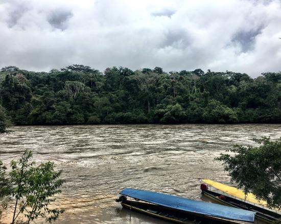 Cotococha Amazon Lodge: The canoes and the river.