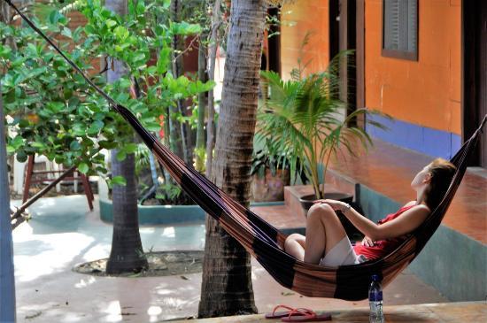 Hostel Esperanza: Hakunamatata
