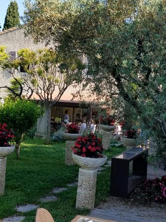 Le Mas Des Carassins Hotel: 20160608_091111_large.jpg