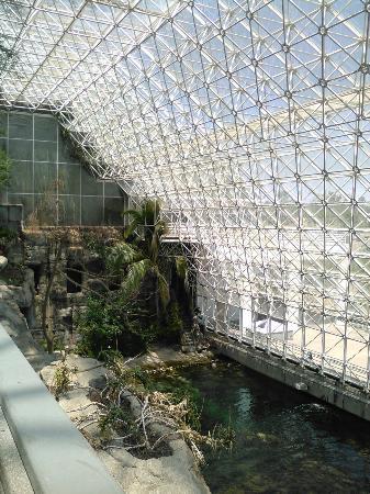 Biosphere 2: KIMG0411_large.jpg