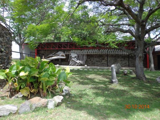 El Mirador Hotel and Spa: Jardin