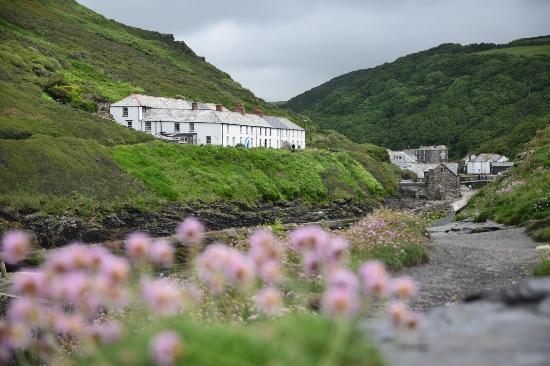 Boscastle Fishing Company: Well worth a visit!  Such a beautiful place, you must try the lobster roll!