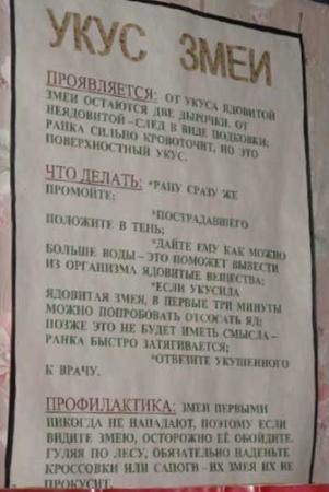 Kimrsky District, Rússia: Инструкция. Что делать, если укусила змея