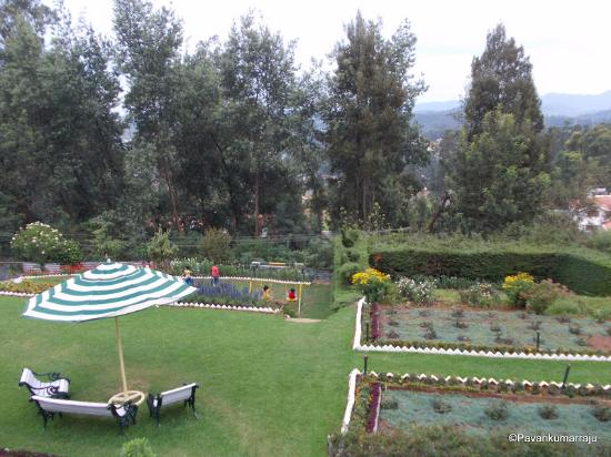 The Willow Hill: garden