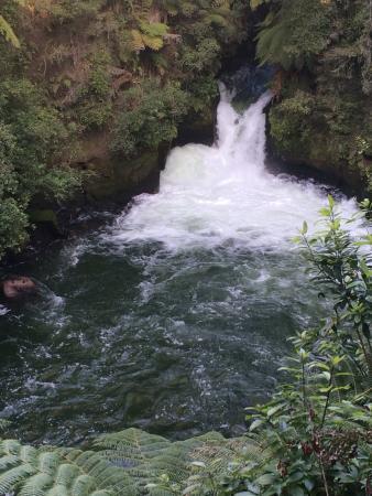 Okere Falls 사진