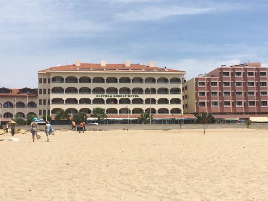 Olivera Resort Hotel: Zeytinci her zaman daha keyifli , özellikle ustanın yemekleri olağan üstü , resepsiyondaki hanım