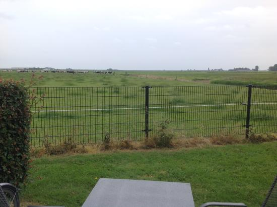 Andijk, The Netherlands: View from the room at the side of the small private terrace