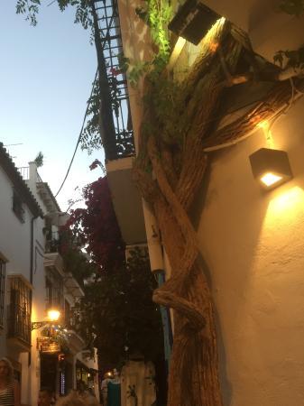 Casa tua: Quaint side street just off the square
