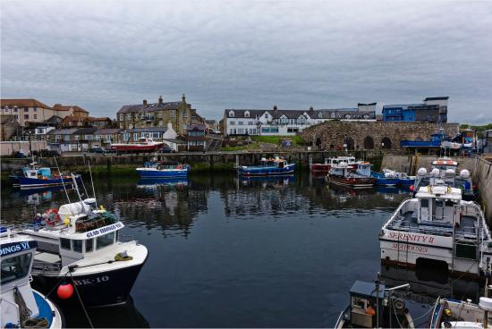 The Bamburgh Castle Inn: The View from the harbour looking at the Bamburg Castle Inn