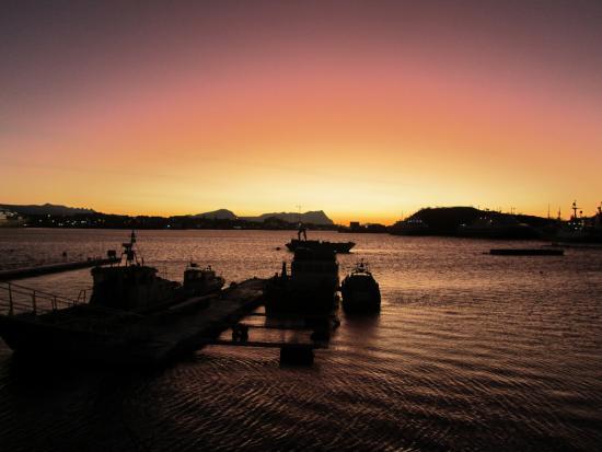 Bodo Maritime
