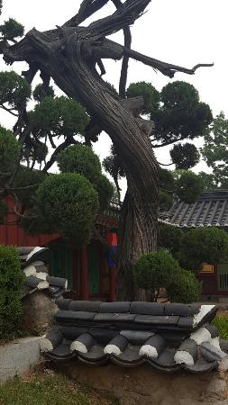 Osan, Korea Południowa: Gwolrisa Temple
