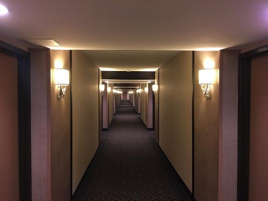 Sheraton Charlotte Airport Hotel: photo3.jpg