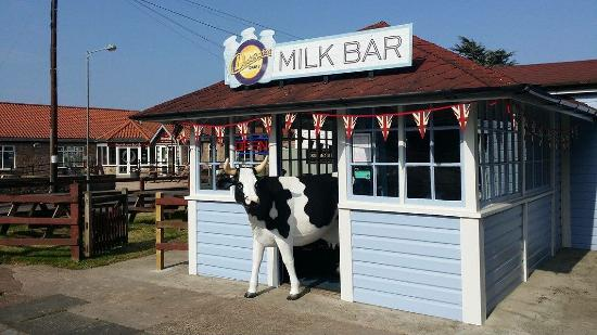 Doddington Dairy Milk Bar