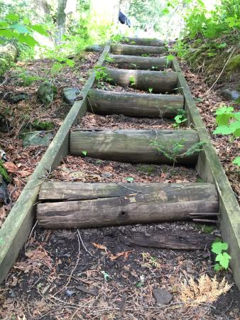 Silver Bay, MN: The trails have some handy steps to manage tough climbs.