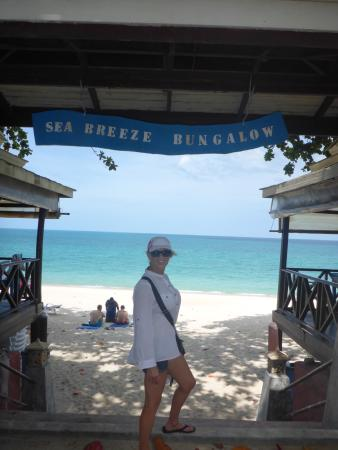 Bikini bar isnt far from this sign in Lamai but off to the left more