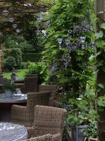 The Pheasant Hotel: Beautiful outside terrace with wisteria and discrete candlelighting