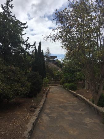 El Parque Botánico de Maspalomas: Botanical Park of Maspalomas (El Parque Botanico de Maspalomas)