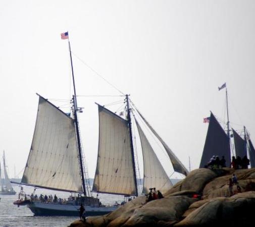 Gloucester Center : parade of sail gloucesters outter harbor