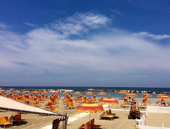 La spiaggia vista dall 39 appartamento fotograf a de for Foto cavalluccio marino