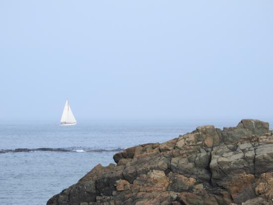 Terrace by the Sea-billede