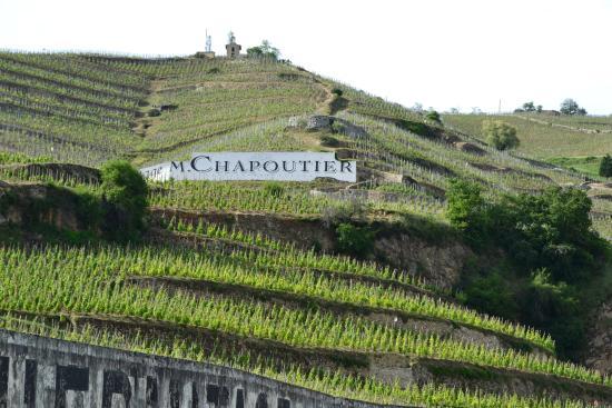 Au Tour Du Vin Tours Photo