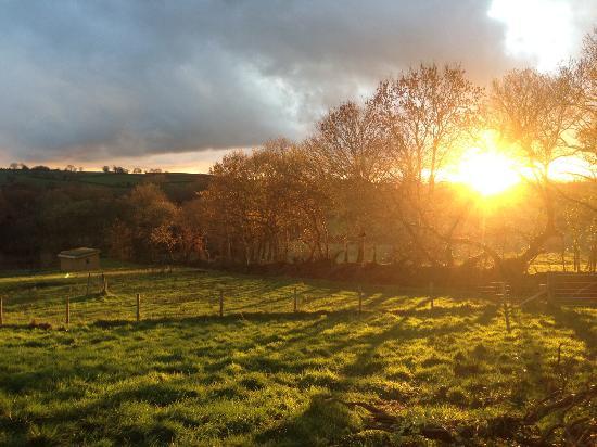 Ciliau Aeron, UK: Sunset at One Cat Farm