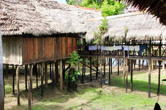 Amazonia Expeditions' Tahuayo Lodge: The property is on stilts as the area floods seasonally. It just adds to the adventure!