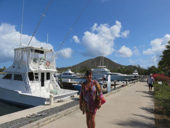 Virgin Gorda Yacht Harbour: Other side of the Marina mountain view