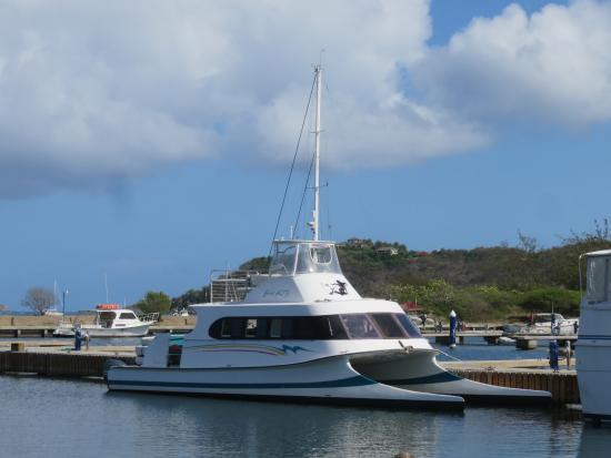 Spanish Town, Virgin Gorda: Our transportation Bad Kitty