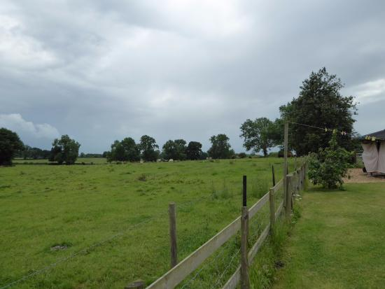 Knockin, UK: View from the garden.