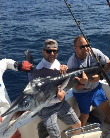 Redrum Sportfishing: Striped Marlin