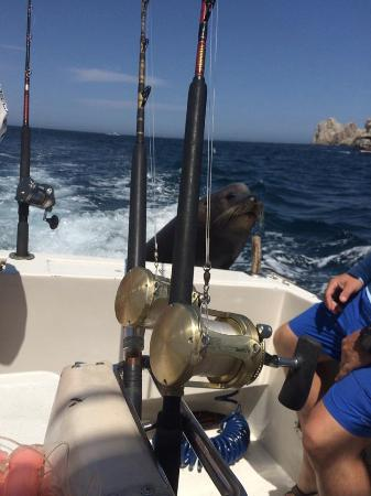 Redrum Sportfishing: Pancho Franscisco