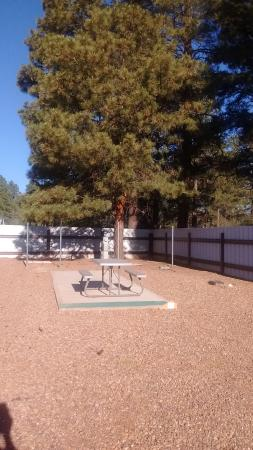 Overgaard, AZ: One of our beautiful spaces!