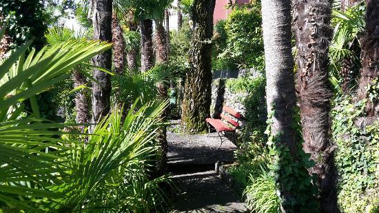 Hotel Rivabella au Lac : 20160606_093435_large.jpg