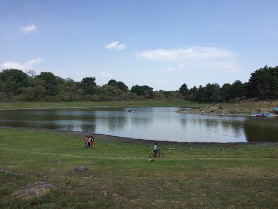 Laguna de Carrizalillos