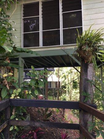 Daintree EcoLodge & Spa: Vista della capanna dall'esterno