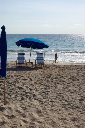 Jensen Beach, Флорида: Umbrellas and Chairs for Lease