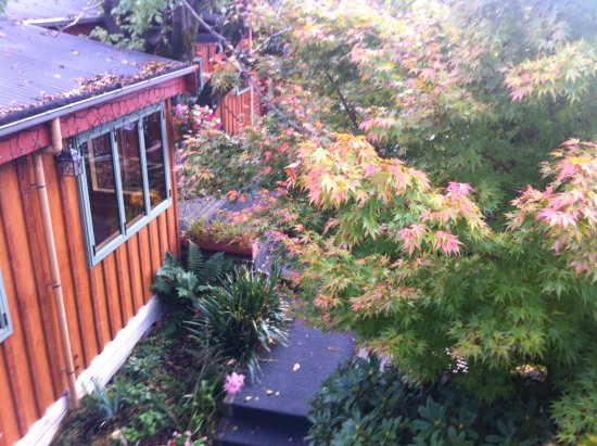 Te Wanaka Lodge: Chalet style in autumn leaves